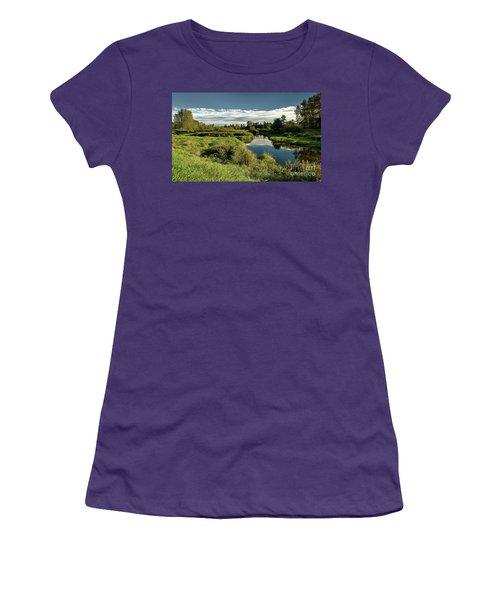 De Boville Slough At Pitt River Dike Women's T-Shirt (Junior Cut) by Rod Jellison