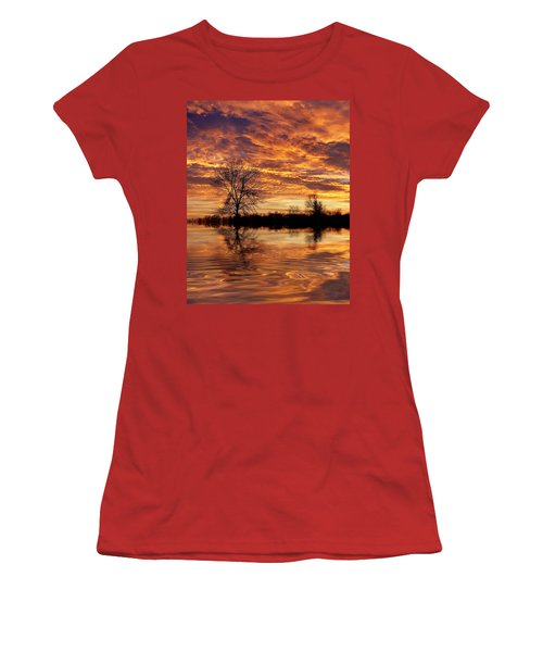 Fire Painters In The Sky Women's T-Shirt (Junior Cut) by Bill Pevlor