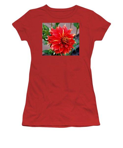 Magnifique Women's T-Shirt (Junior Cut) by Jeanette C Landstrom