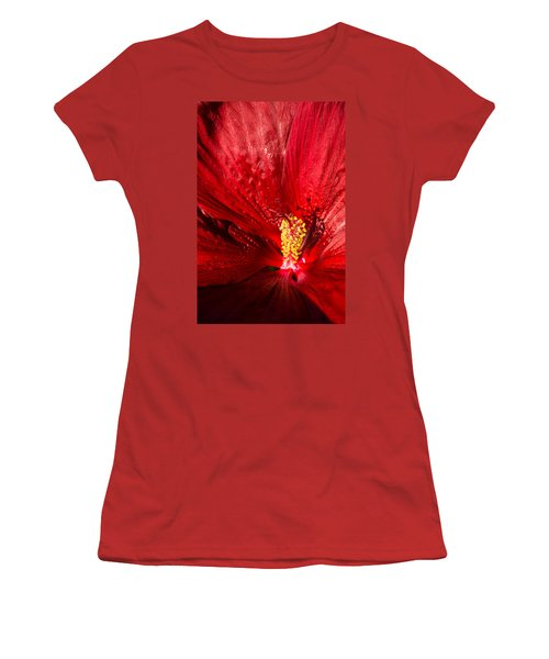 Passionate Ruby Red Silk Women's T-Shirt (Junior Cut) by Georgia Mizuleva