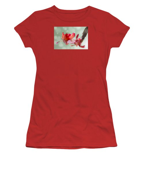 Red Christmas Cactus Bloom Women's T-Shirt (Junior Cut) by Patti Deters