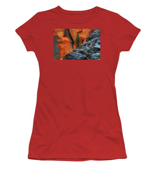 The Beauty Of Sandstone Zion Women's T-Shirt (Junior Cut) by Bob Christopher