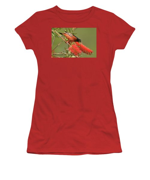 Orchard Oriole  Women's T-Shirt (Junior Cut) by Alan Lenk