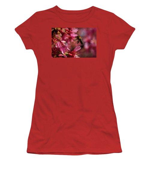 Bee Women's T-Shirt (Junior Cut) by Jay Stockhaus