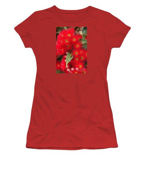 Australian Red Eucalyptus Flowers Women's T-Shirt (Junior Cut) by Joy Watson