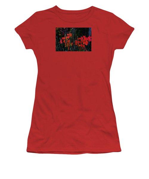 Autumn Women's T-Shirt (Junior Cut) by Steven Clipperton