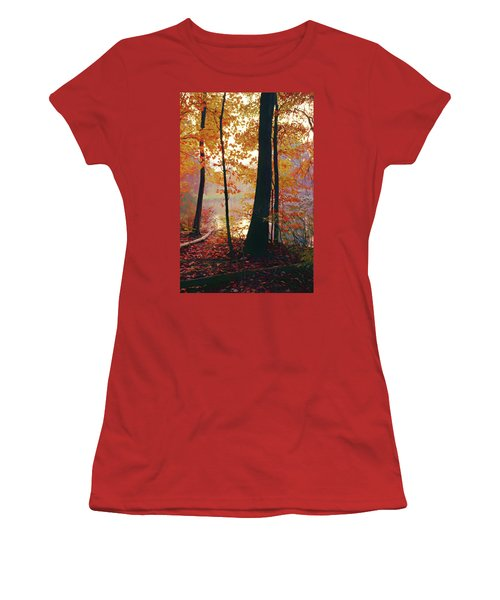Bernharts Dam Fall 031 Women's T-Shirt (Junior Cut) by Scott McAllister