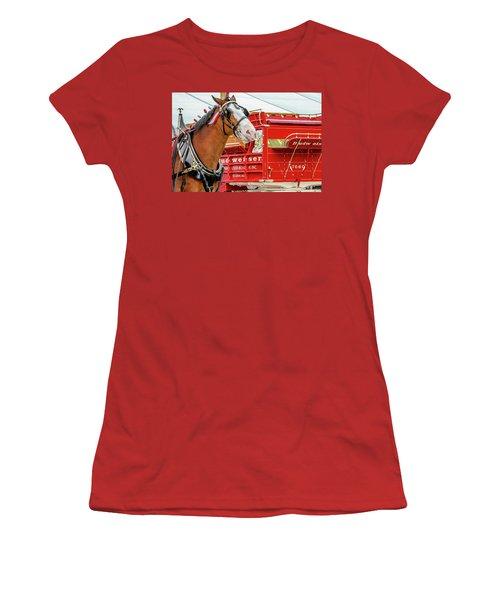Budweiser Clydesdale In Full Dress Women's T-Shirt (Junior Cut) by Bill Gallagher