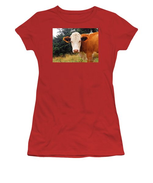 Women's T-Shirt (Junior Cut) featuring the photograph Cow In Pasture by MGL Meiklejohn Graphics Licensing