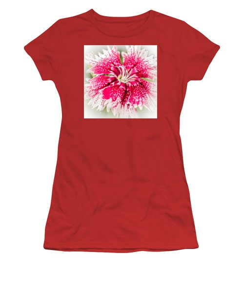Dianthus Beauty Women's T-Shirt (Junior Cut) by Yeates Photography