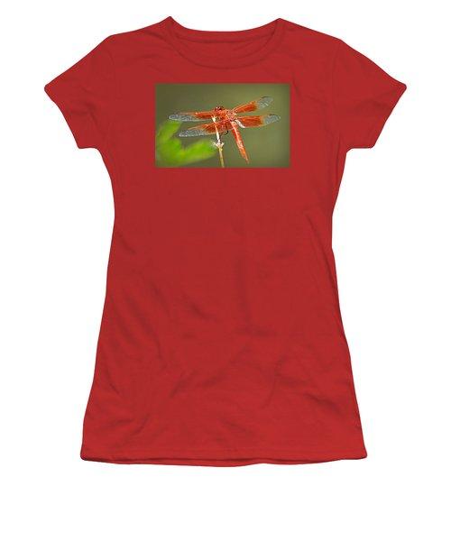 Women's T-Shirt (Junior Cut) featuring the photograph Flame Skimmer by AJ Schibig