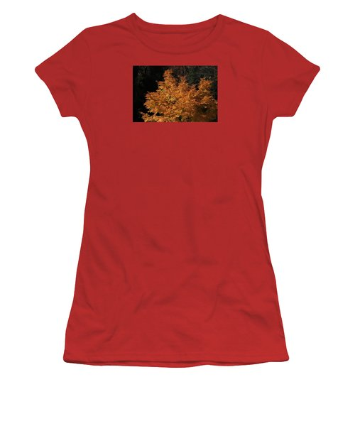 Flaming Tree Brush Women's T-Shirt (Junior Cut) by Deborah  Crew-Johnson