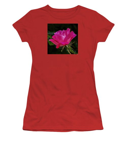 Knock-out Rose Women's T-Shirt (Junior Cut) by Susi Stroud