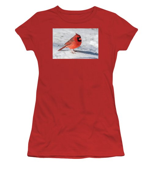 Male Cardinal In Winter Women's T-Shirt (Athletic Fit)