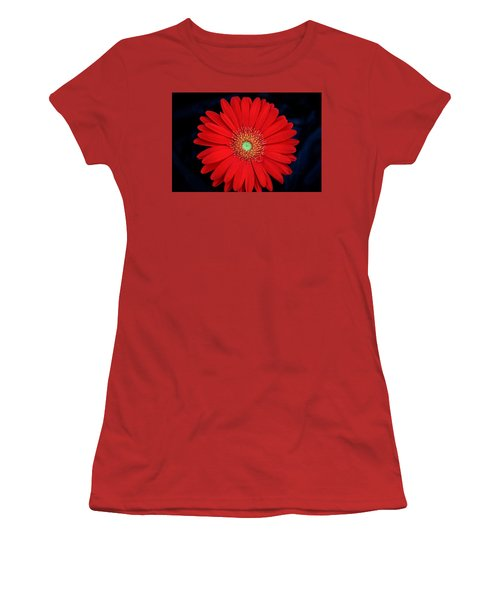 Women's T-Shirt (Athletic Fit) featuring the photograph Red Gerber Daisy On Black by Sheila Brown
