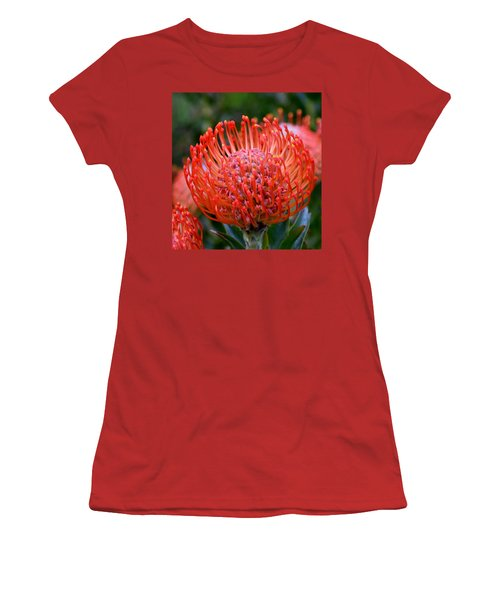 Red  Pincushion Protea Women's T-Shirt (Athletic Fit)
