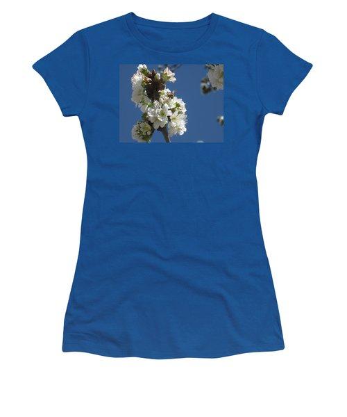 Bee On Cherry Blossoms Women's T-Shirt