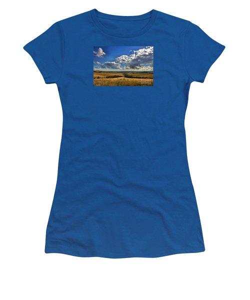 Donny Brook Hills Women's T-Shirt (Junior Cut) by Joy Watson