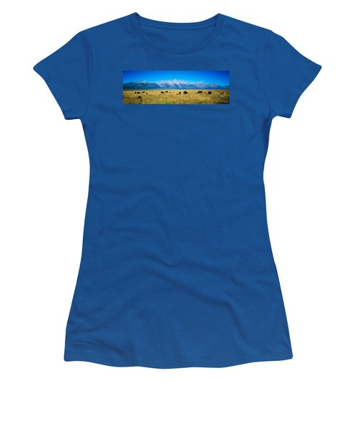 Field Of Bison With Mountains Women's T-Shirt (Junior Cut) by Panoramic Images