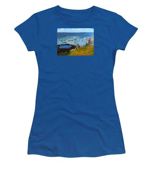 Flagstaff Point  Women's T-Shirt (Junior Cut) by Pamela  Meredith