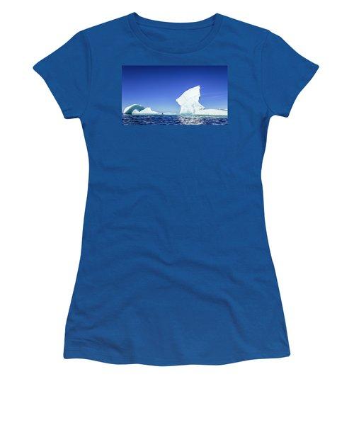 Lone Penguin Standing On Iceberg Women's T-Shirt