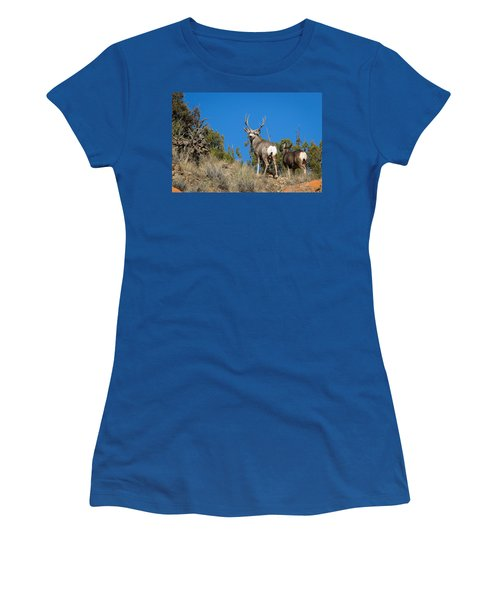 Mule Deer Buck Women's T-Shirt (Athletic Fit)