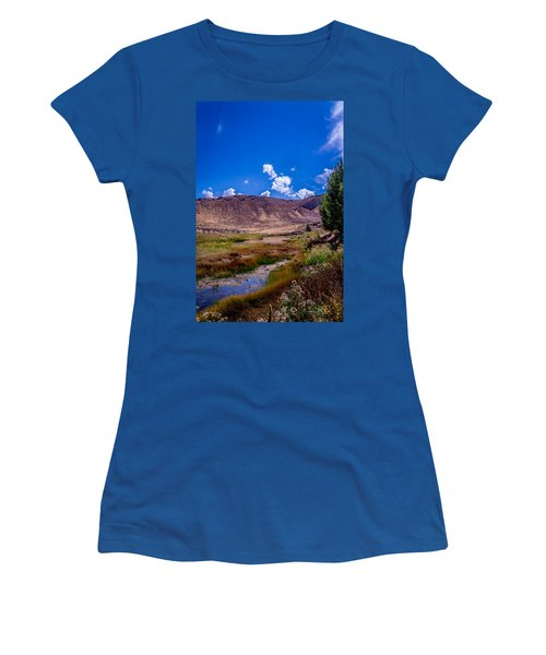 Peaceful Valley II Women's T-Shirt (Athletic Fit)