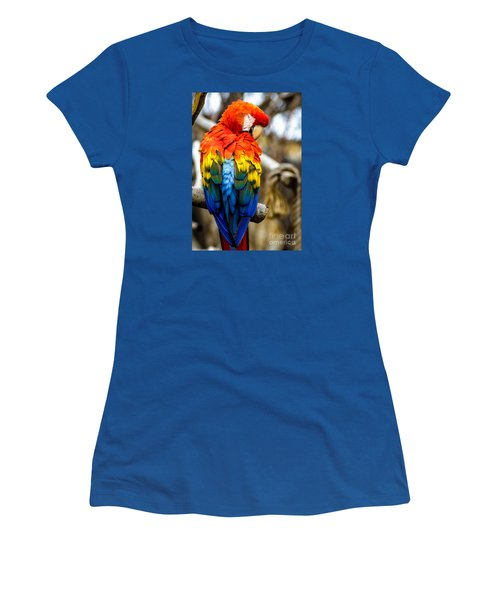 Preening Scarlet Macaw Women's T-Shirt
