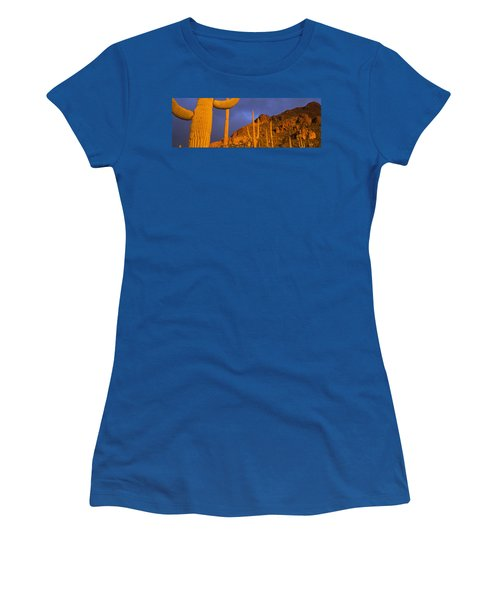 Saguaro Cactus, Tucson, Arizona, Usa Women's T-Shirt