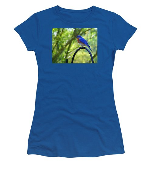 Mr Bluebird Women's T-Shirt (Junior Cut) by Judy Wanamaker
