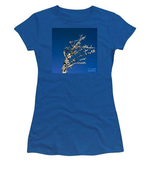 Tree In Winter Against A Blue Sky Women's T-Shirt