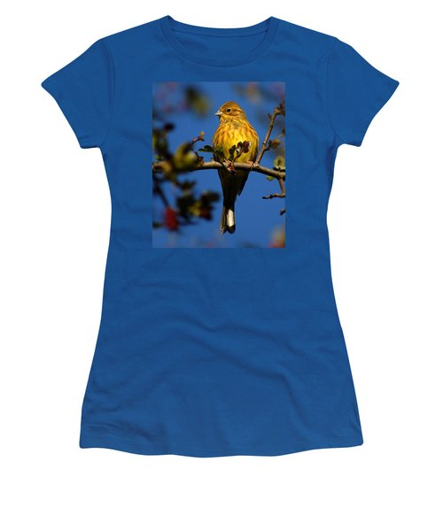 Yellowhammer Women's T-Shirt