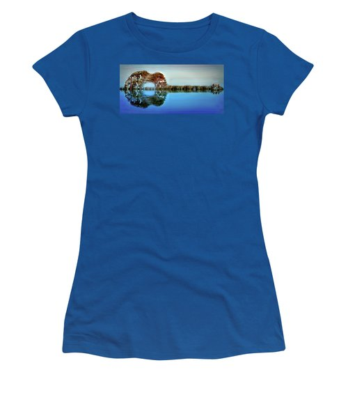 Women's T-Shirt (Junior Cut) featuring the digital art Acoustic Guitar At Gordon's Pond by Bill Swartwout