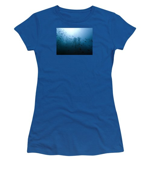 Diving With Fishes Women's T-Shirt