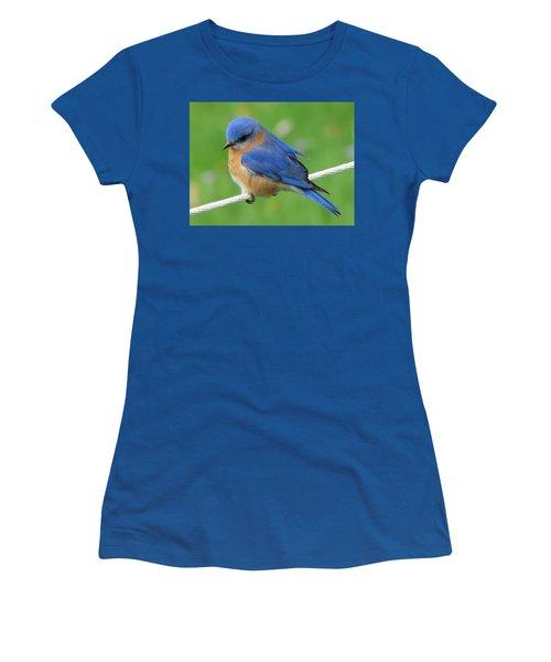 Intense Blue Bird Women's T-Shirt (Junior Cut) by Betty Pieper