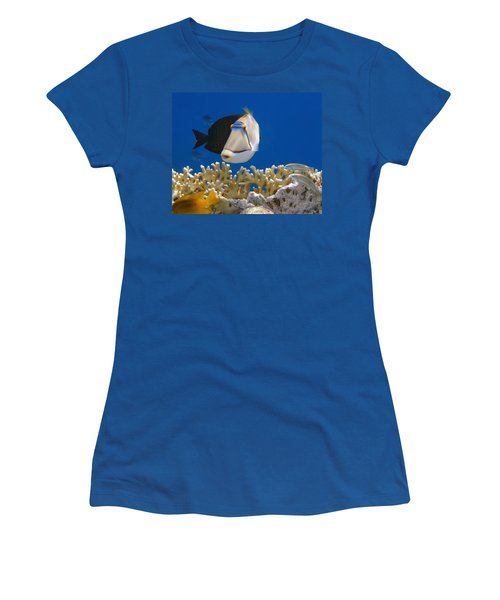 Picasso Fish And Klunzingerwrasse Women's T-Shirt