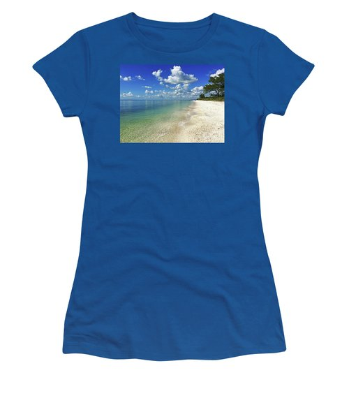Puffy White Clouds At Delnor-wiggins Women's T-Shirt