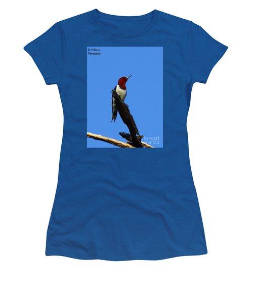 Red Headed Woodpecker On A Snag Women's T-Shirt