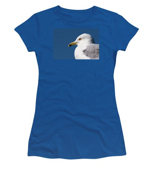 Ring-billed Gull Portrait Women's T-Shirt (Athletic Fit)