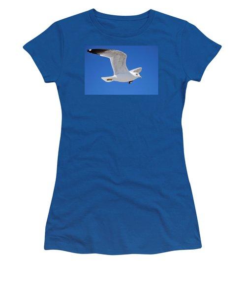 Seagull Women's T-Shirt (Junior Cut) by Ludwig Keck