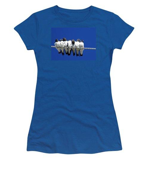 Seven Swallows Sitting Women's T-Shirt