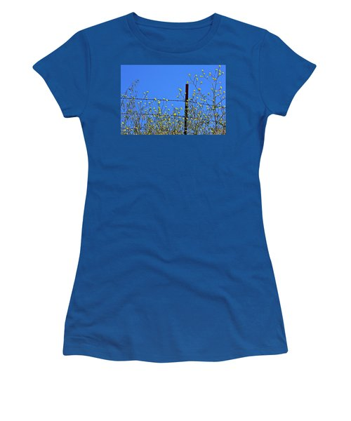 Spring In The Country Women's T-Shirt