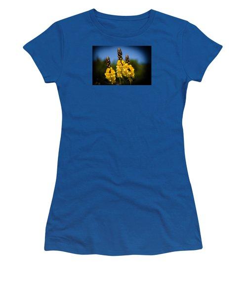 Three Sisters Women's T-Shirt (Junior Cut) by Milena Ilieva