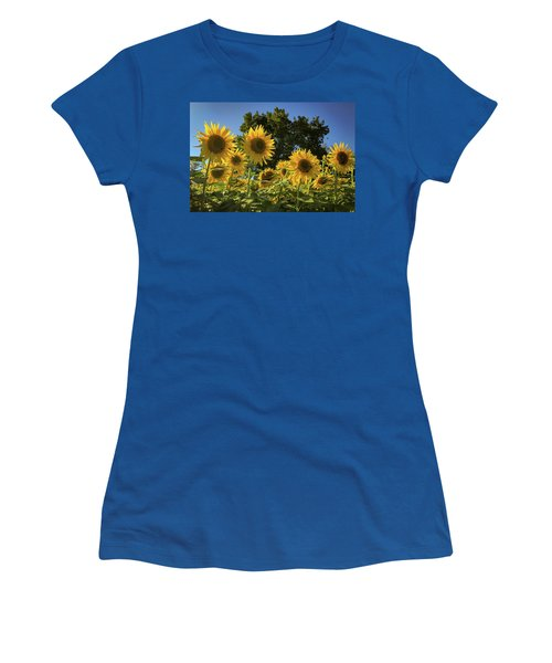 Sunlit Sunflowers Women's T-Shirt
