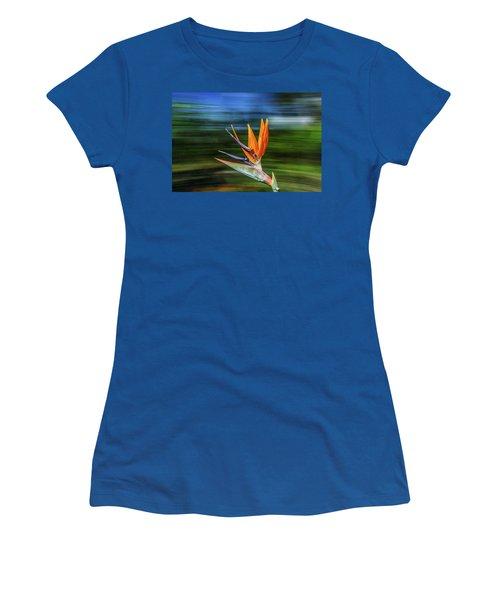 Flying Bird Of Paradise Women's T-Shirt
