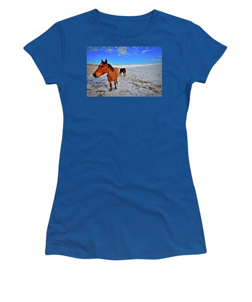 Women's T-Shirt featuring the photograph Geldings In The Snow by David Patterson