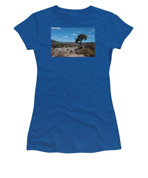 Pinyon Pine With North Rim In Background Black Canyon Of The Gunnison Women's T-Shirt