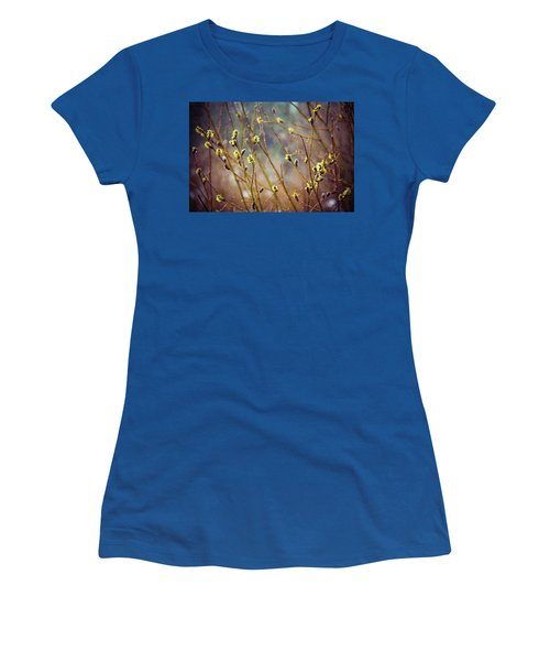 Snowfall On Budding Willows Women's T-Shirt