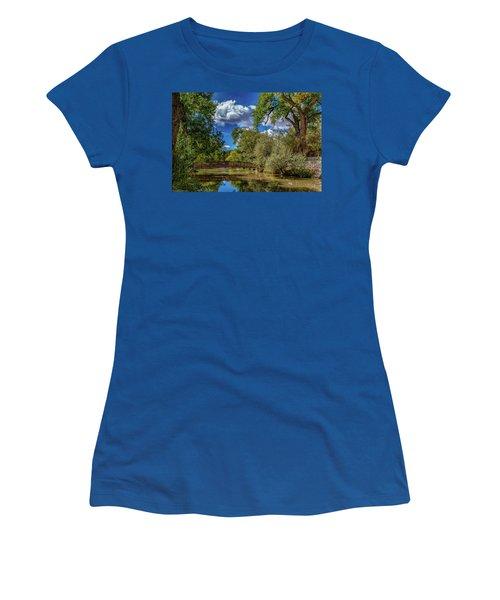 Sunrise Springs Women's T-Shirt