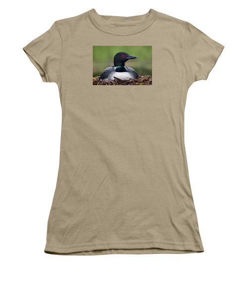 Common Loon On Nest British Columbia Women's T-Shirt (Junior Cut) by Connor Stefanison